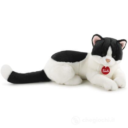 Gatto Gennaro