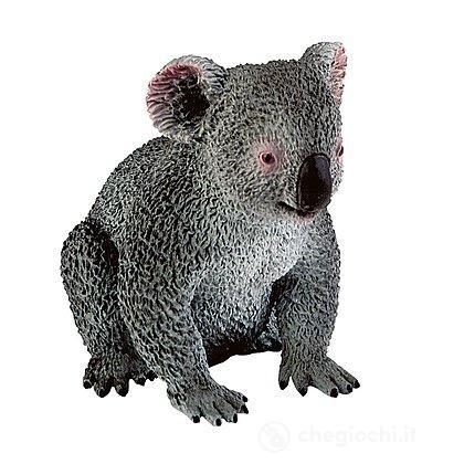Koala (63567)