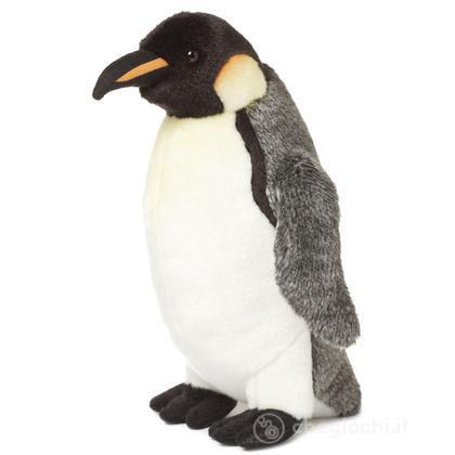 Pinguino imperatore grande