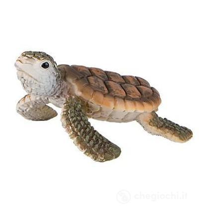 Tartaruga marina cucciolo (63569)