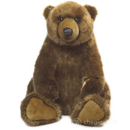 Grizzly orso seduto medio