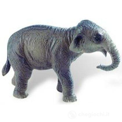 Elefante Indiano cucciolo (63589)