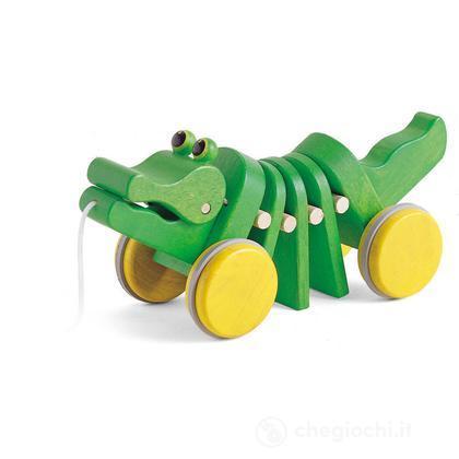 Alligatore (4205609)