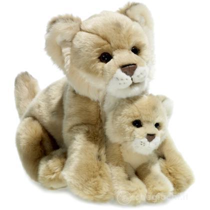 Leonessa madre e cucciolo