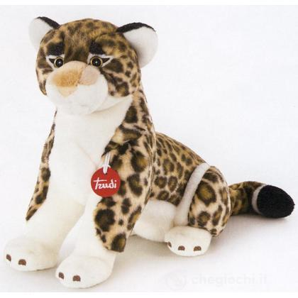 Leopardo Achille medio