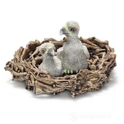 Aquilotti nel nido (14635)