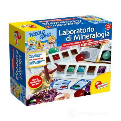 Laboratorio Di Mineralogia (46393)
