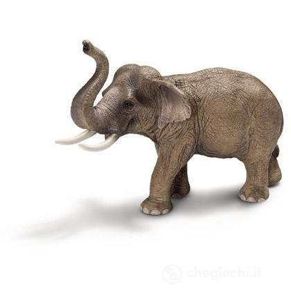 Elefante asiatico (14653)