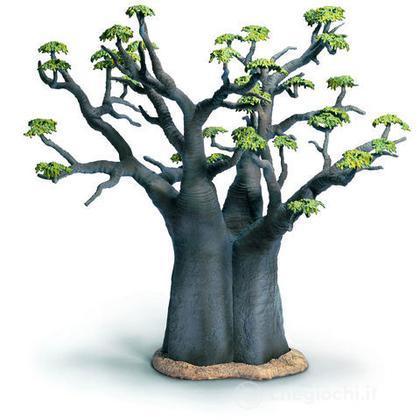 Baobab africano (30655)