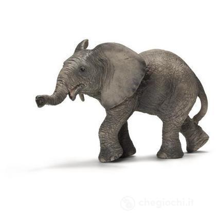 Elefante africano cucciolo (14658)