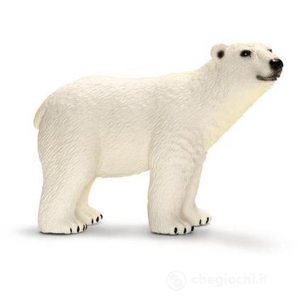 Orso polare (14659)