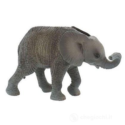 Elefante Africano Cucciolo (63659)