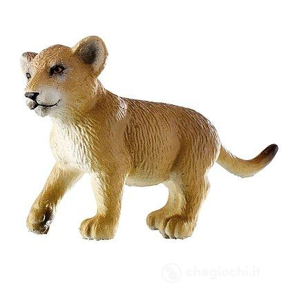 Leone cucciolo (63682)