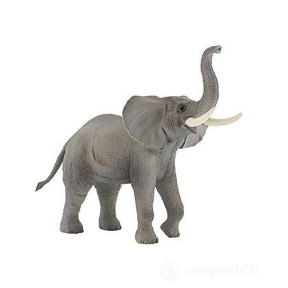 Elefante Africano (63685)