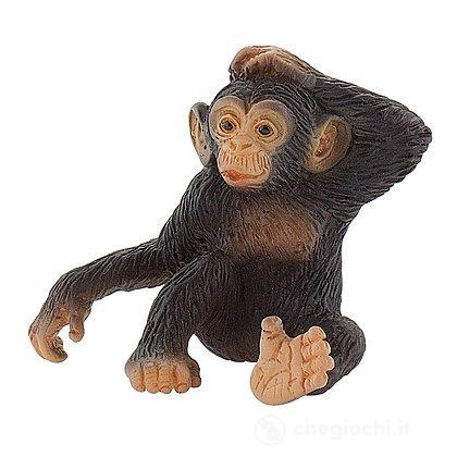 Scimpanzé cucciolo (63686)