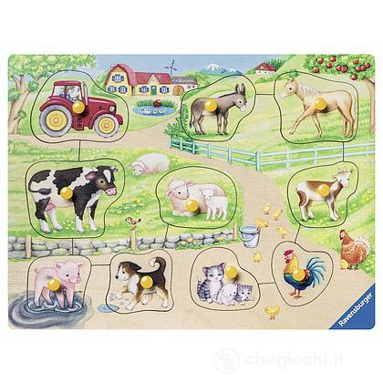 Mattina in fattoria (3689)