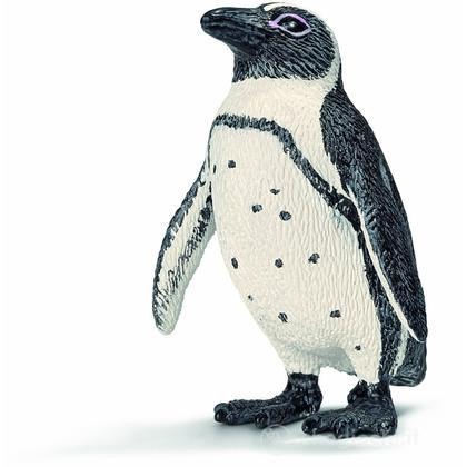 Pinguino Africano (14705)