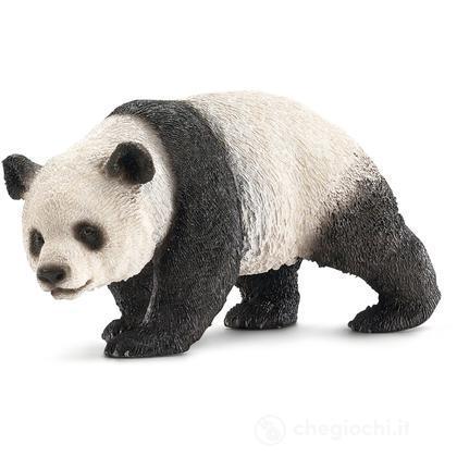 Femmina Di Panda Gigante (14706)