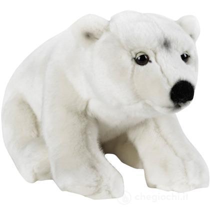 Orso Polare Medio (770723)