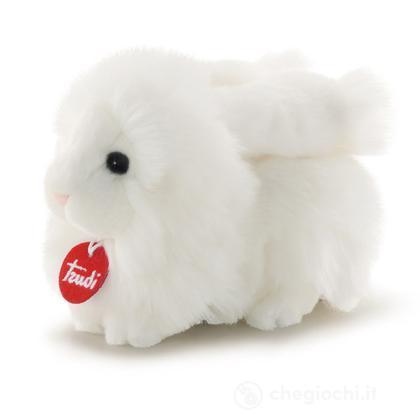 Coniglio bianco Dustin