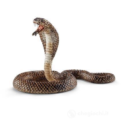 Cobra (14733)