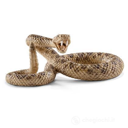Serpente a Sonagli (14740)