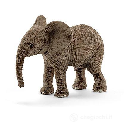 Cucciolo di Elefante Africano (14763)