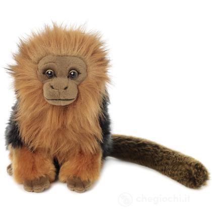 Scimmia Leone
