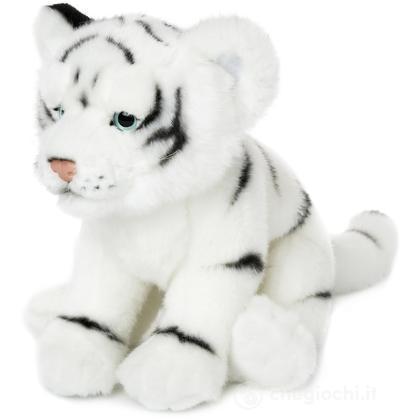 Tigre bianca stesa piccola