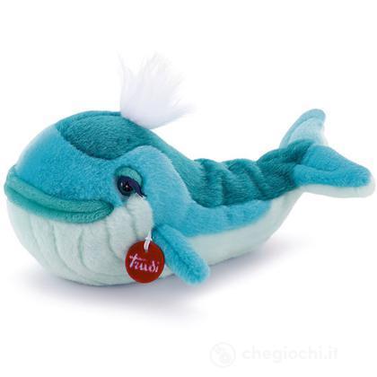 Balena Jasmine piccolo