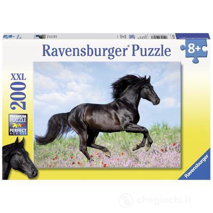 Black Stallion (12803)