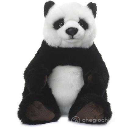 Panda seduto piccolo