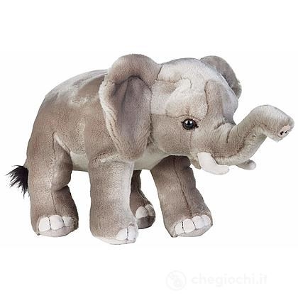 Elefante (770839)