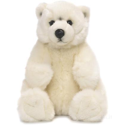 Orso polare seduto piccolo