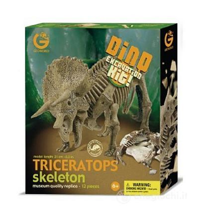 Triceratopo Scheletro