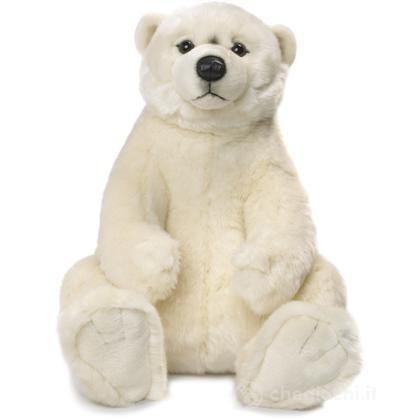 Orso polare seduto medio