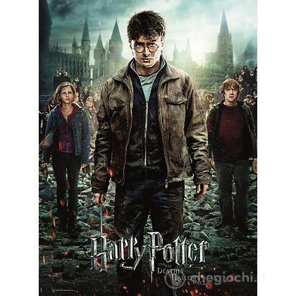 Harry Potter (12871)