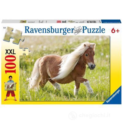 Little Pony (10872)