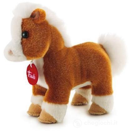 Trudino Cavallo